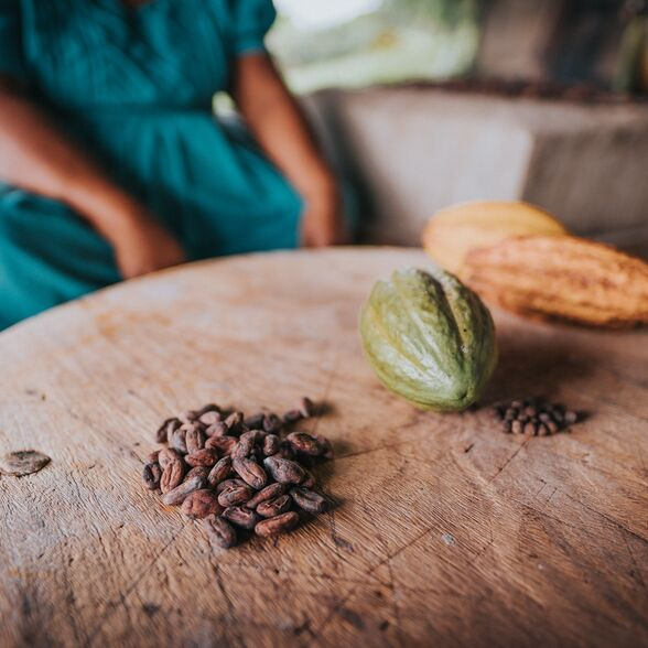 valrhona.us-our-mission-a-fairer-and-more-sustainable-world-of-cacao