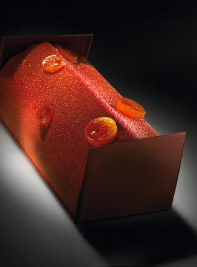Xocolita