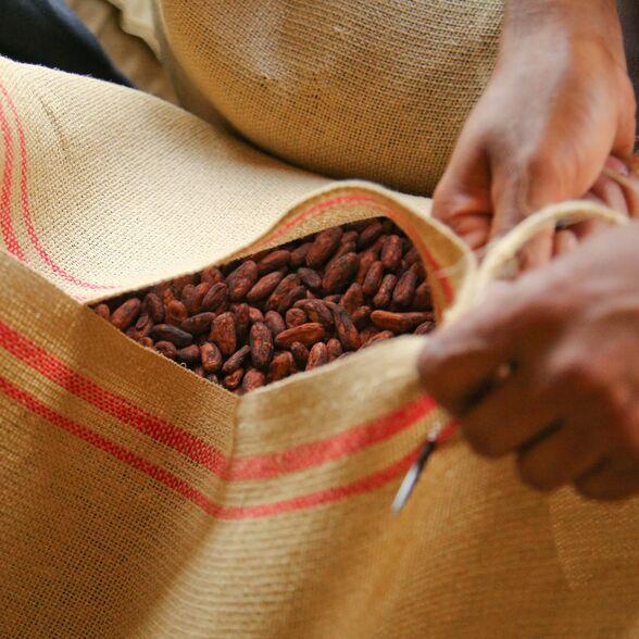 valrhona.us-live-long-cocoa-traceability