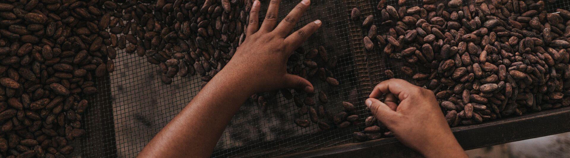 valrhona.us-live-long-cocoa-banner
