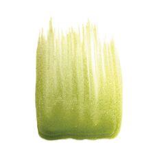 Préparation colorée à base de beurre de cacao Vert Clair