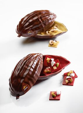RASPBERRY INSPIRATION COCOA POD WITH MENDIANTS