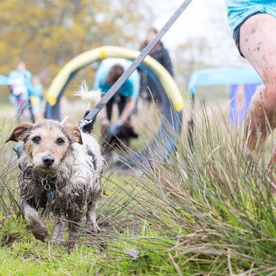 Volunteer at Muddy Dog Challenge