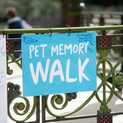 Battersea's Pet Memory Walk