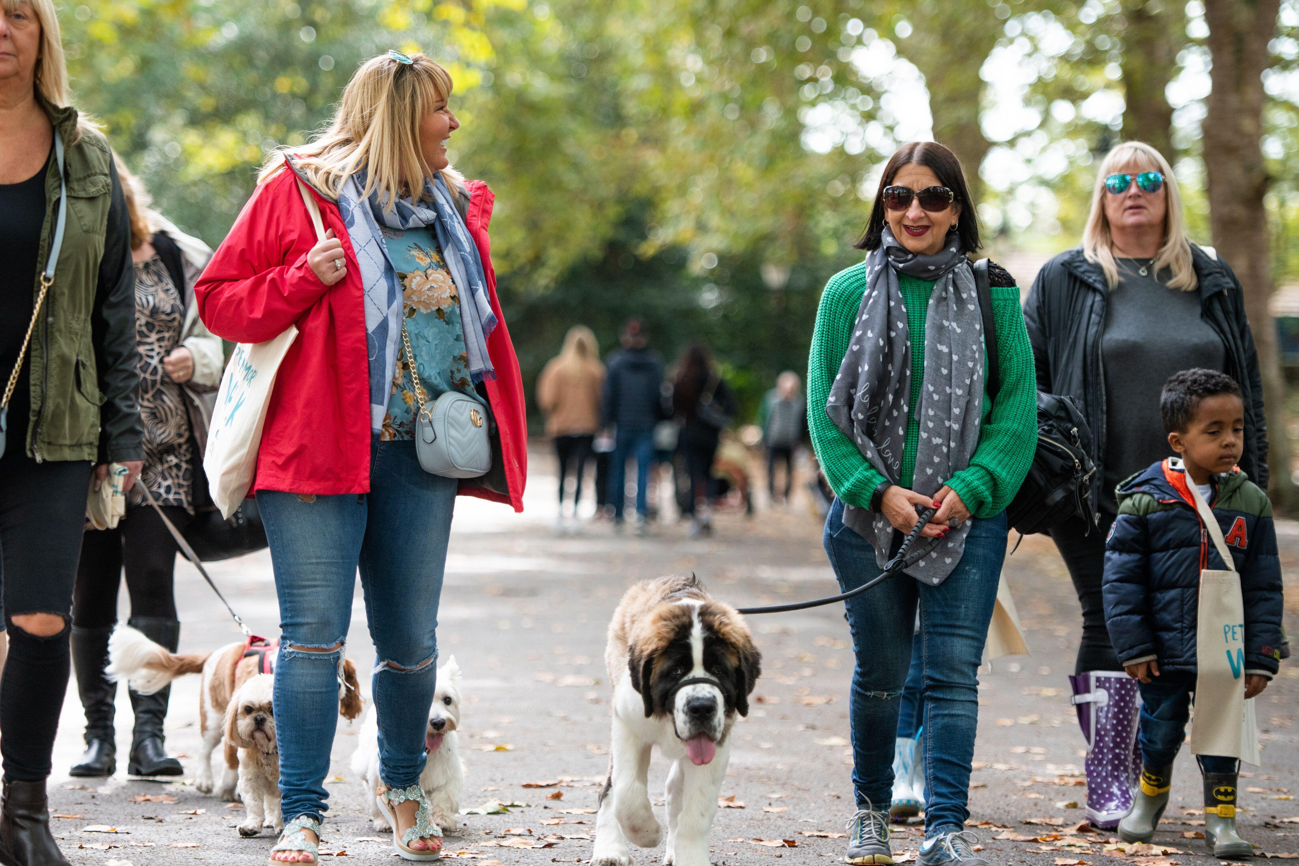 Battersea's Pet Memory Walk 2018