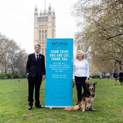 How Battersea changed the law on animal cruelty