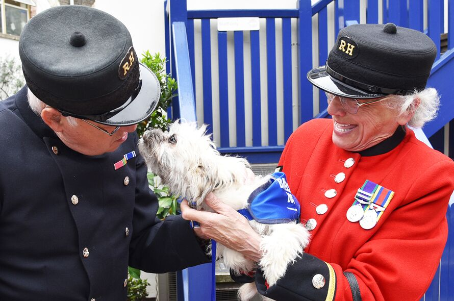 Battersea receives prestigious Queen's Award for Voluntary ...