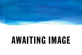WEB - SHOP - Awaiting Image Crop
