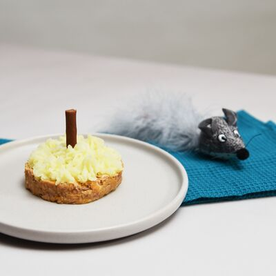 Cat Birthday Cake Recipe