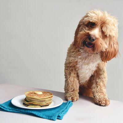 Dog-friendly banana pancakes