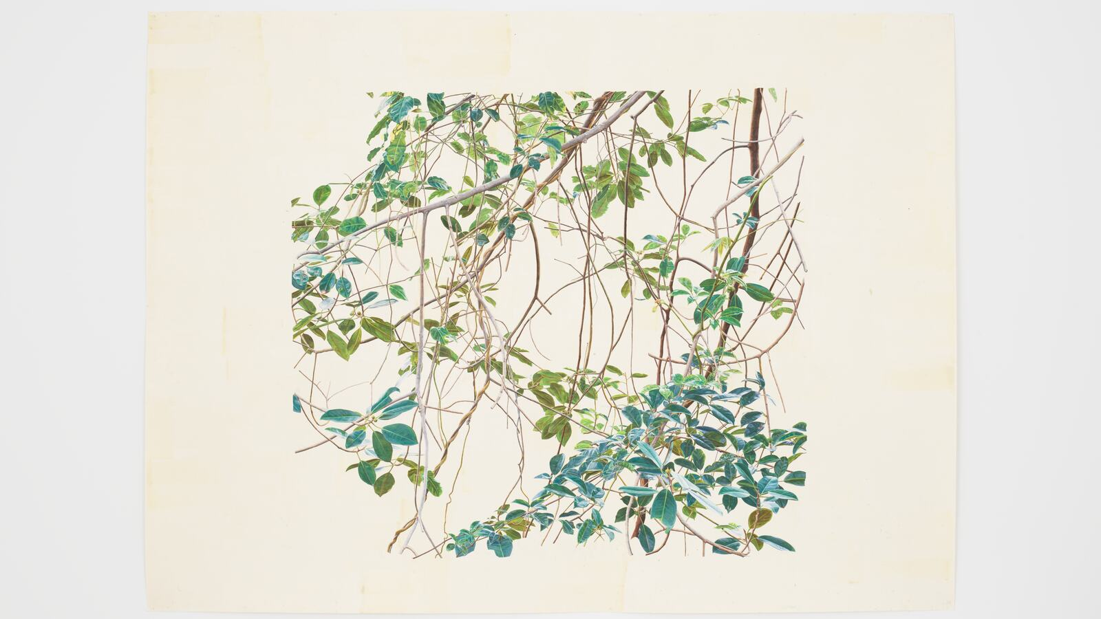 Toba Khedoori, Untitled (branches 1), 2011-2012. © Toba Khedoori 2020. Courtesy the artist and David Zwirner.
