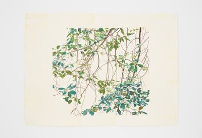 Toba Khedoori, Untitled (branches 1), 2011-2012. © Toba Khedoori 2020. Courtesy the artist and David Zwirner.
