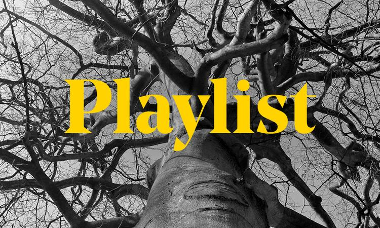 Graphic featuring the word 'playlist' over the top of a black and white image of a tree in winter