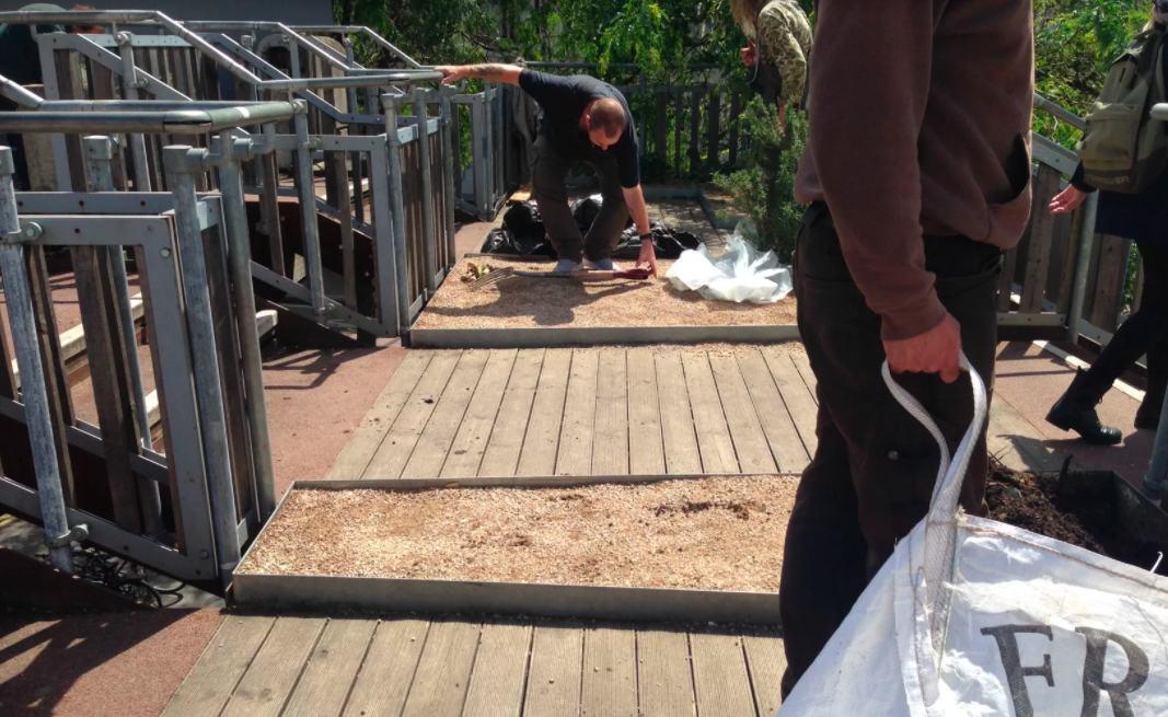 Volunteer gardeners - container steps