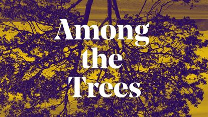 Among the Trees Spotify playlist graphic