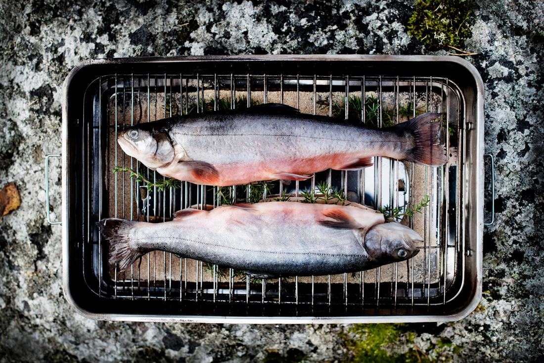 The Great Nordic Feast - fisk - Sandra Lee Pettersson