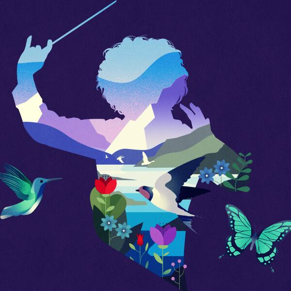 Graphic silhouette of a conductor with sounding of birds, butterfly and flowers