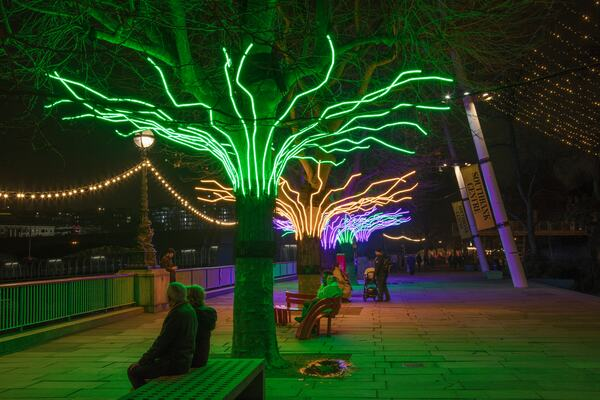David Ogle, Loomin, 2020: Light installations on trees around the Southbank Centre. Image credit, Morley Von Sternberg
