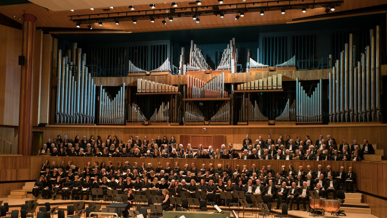 Barts Choir on stage at Royal Festival Hall, Southbank Centre