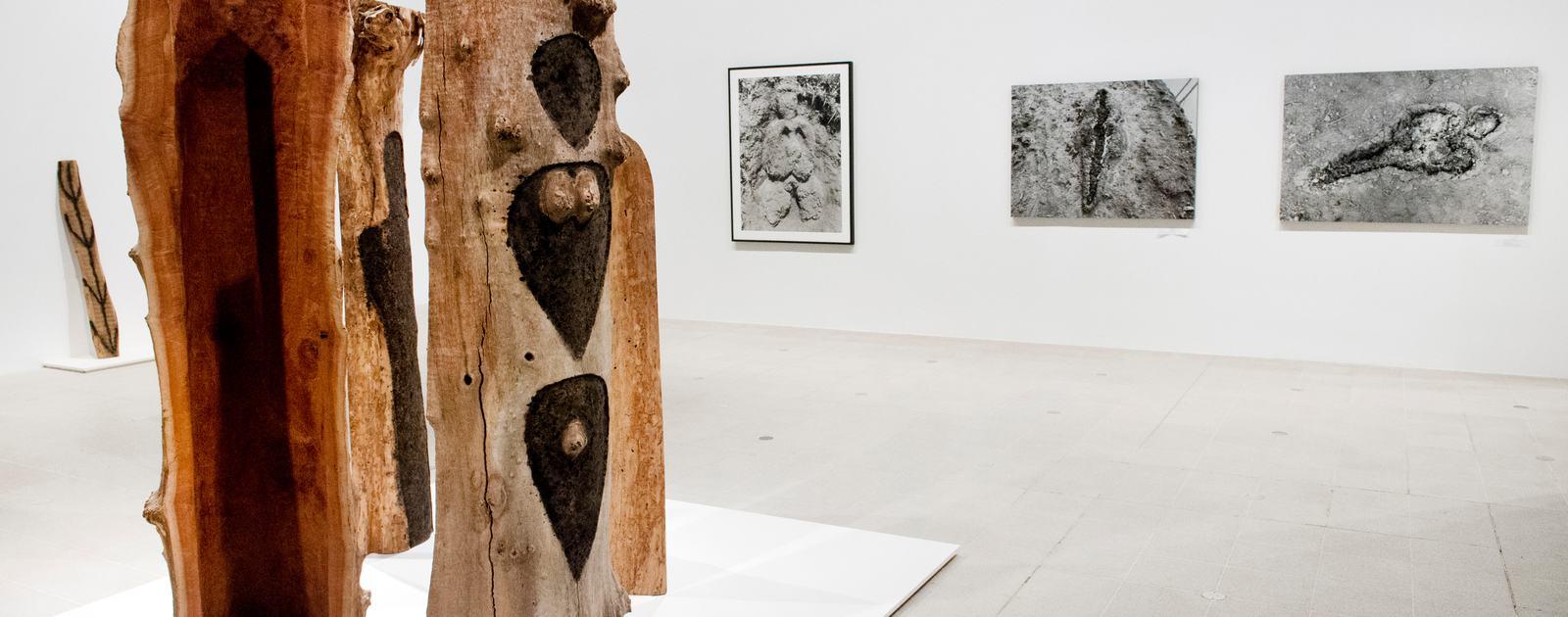 Ana Mendieta at Hayward Gallery, London. .Photo by Linda Nylind. 22/9/2013.