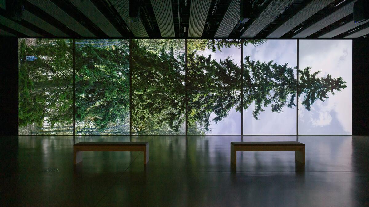 Eija-Liisa Ahtila, Horizontal - Vaakasuora, 2011, at Among the Trees, Hayward Gallery, 2020. © Crystal Eye, Helsinki, 2020. Courtesy of Hayward Gallery. Photo Mark Blower