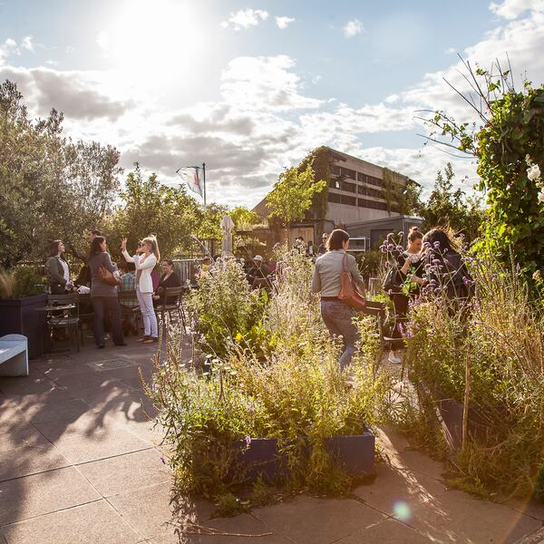 People enjoying the Queen Elizabeth Roof Garden at the Southbank Centre