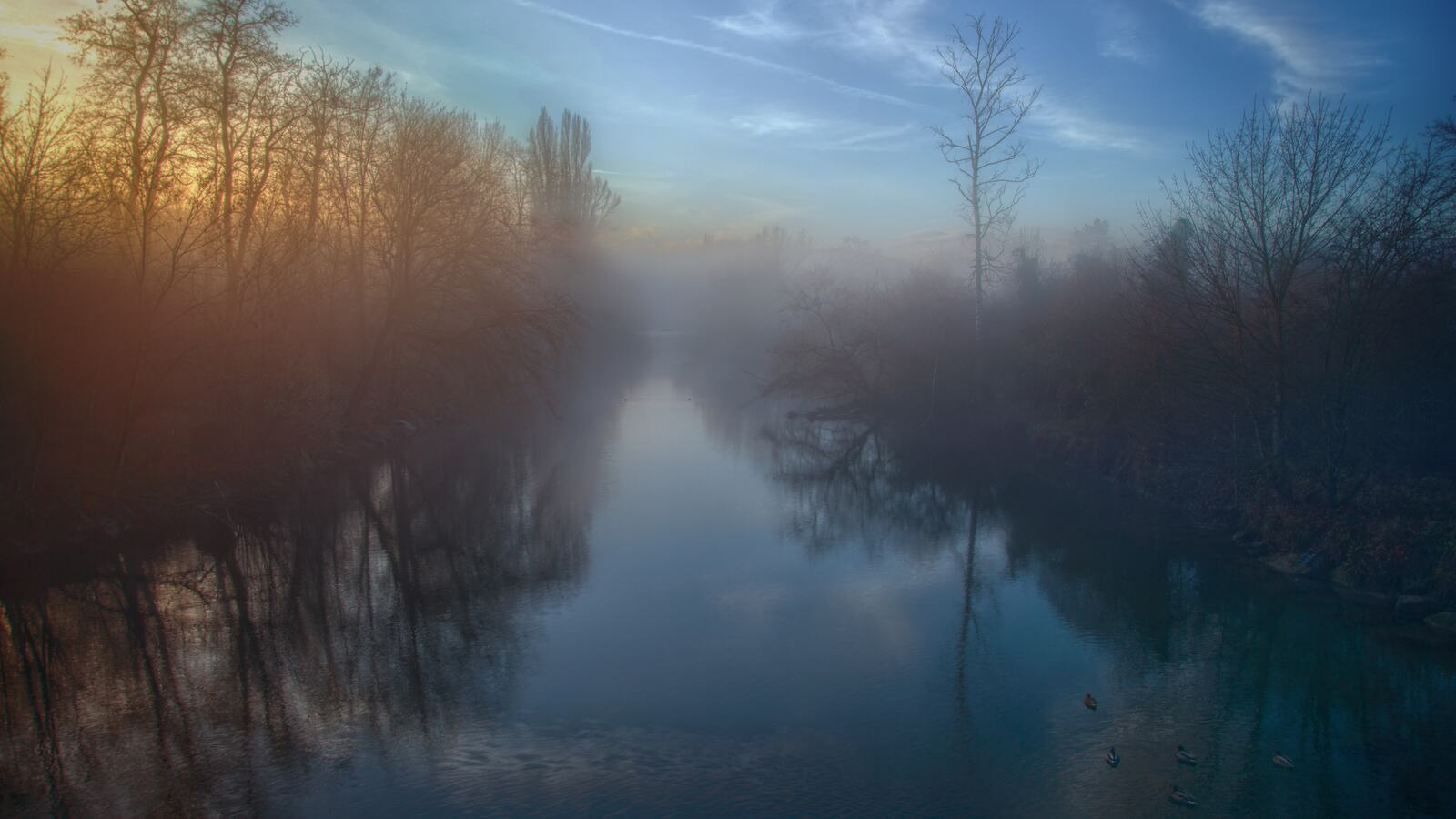 Foggy Lake Landscape