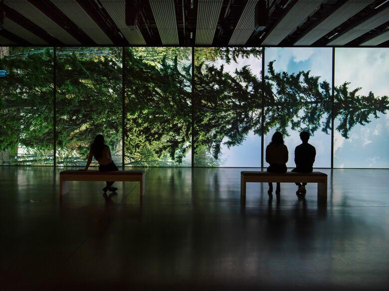 Eija-Liisa Ahtila, Horizontal - Vaakasuora, 2011, at Among the Trees, Hayward Gallery, 2020. © Crystal Eye, Helsinki, 2020. Courtesy of Hayward Gallery. Photo Linda Nylind)