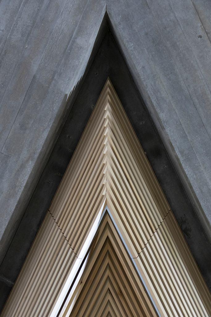 Queen Elizabeth Hall roof light - May 2017