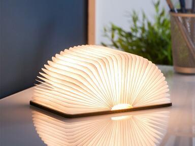 Mini Walnut Smart Book LED Light image