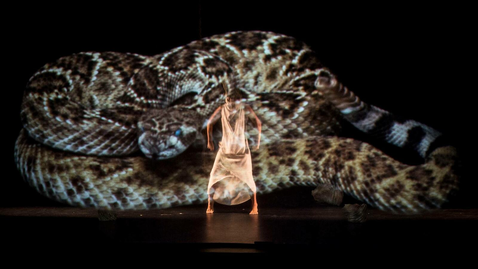 Ino Moxo, snake projected on wall while a dancer performs