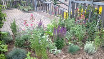 Finished flower bed on the Southbank Centre container steps