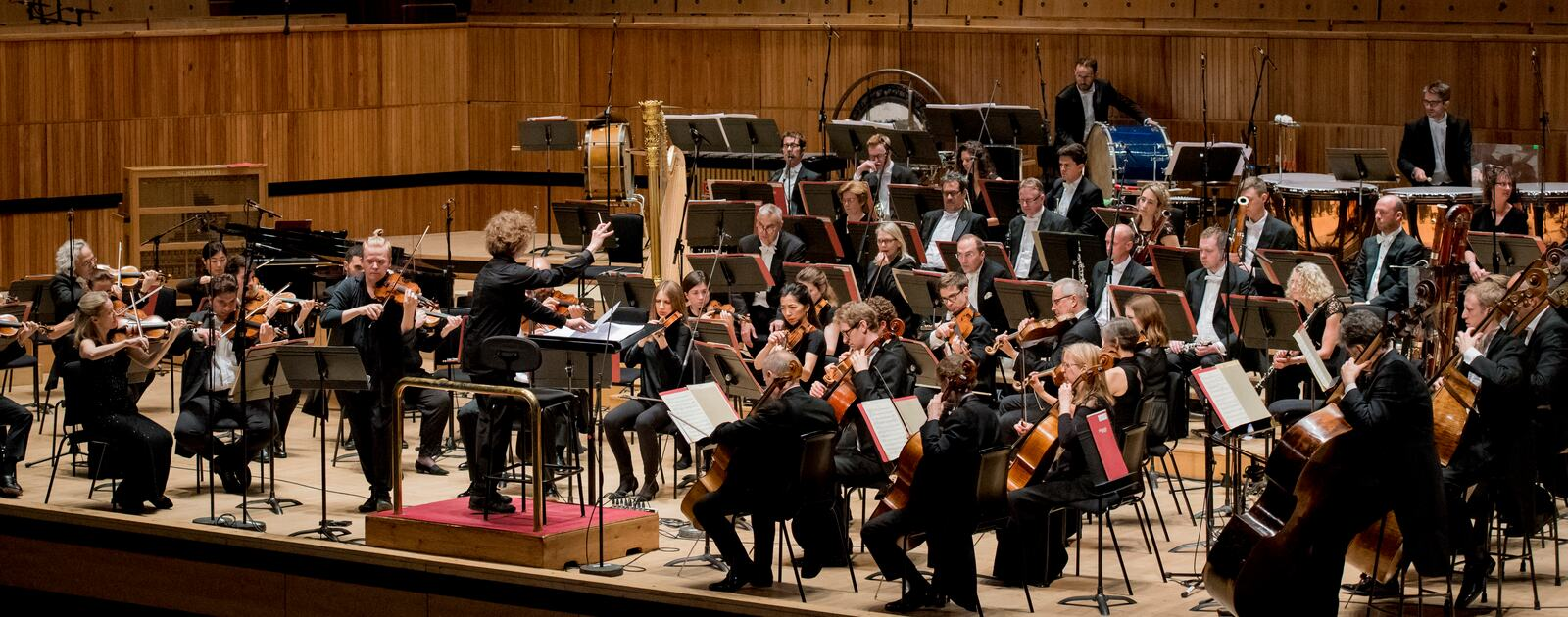 Sunday Matinee concert in Royal Festival Hall