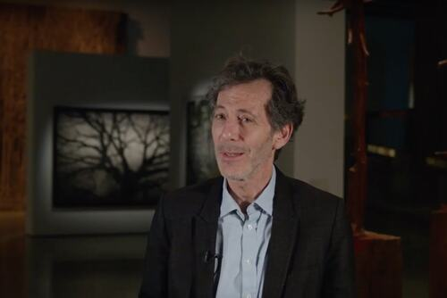 Hayward Gallery Director Ralph Rugoff talking about the 2020 exhibition Among the Trees
