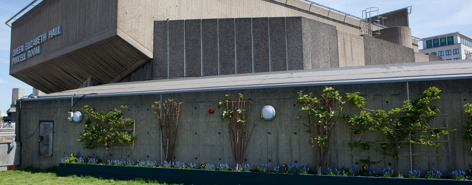 A brief history of our 1960s buildings | Southbank Centre