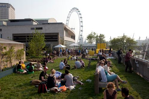View of people enjoying the Queen Elizabeth Hall Roof Garden at the Southbank Centre
